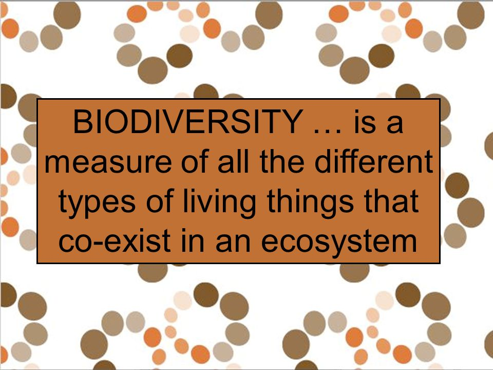 BIODIVERSITY … is a measure of all the different types of living things that co-exist in an ecosystem