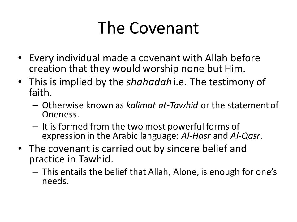 The Covenant Every individual made a covenant with Allah before creation that they would worship none but Him.
