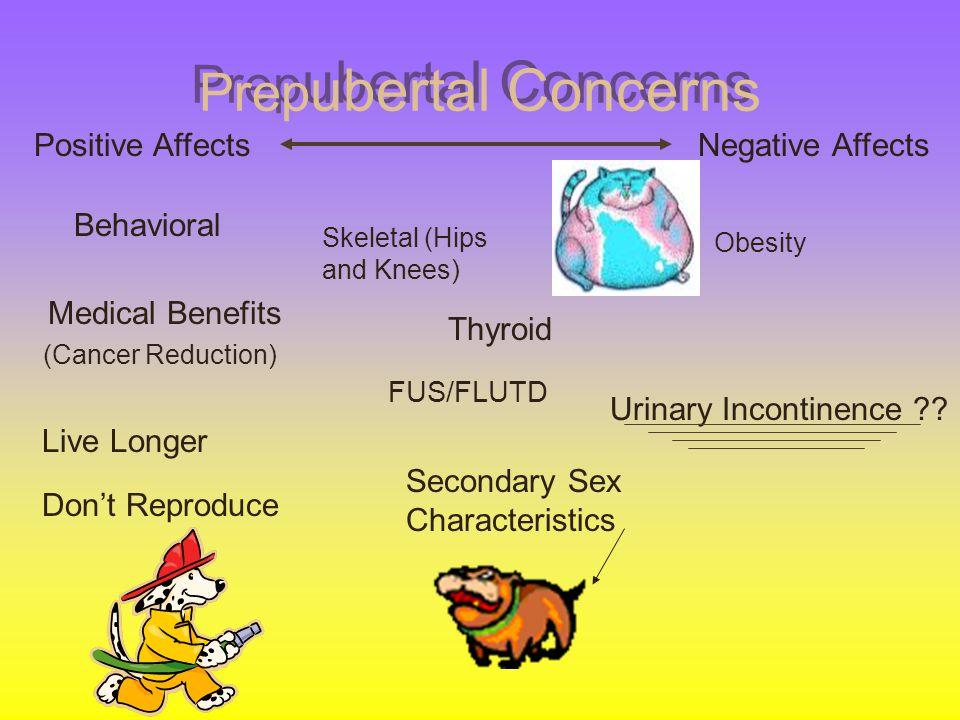 Prepubertal Concerns Positive Affects Negative Affects Behavioral