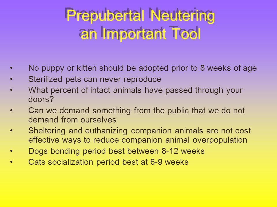 Prepubertal Neutering an Important Tool