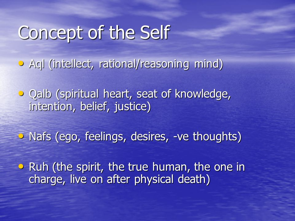 Concept of the Self Aql (intellect, rational/reasoning mind)
