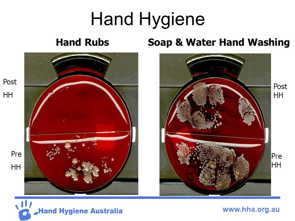 Soap & Water Hand Washing