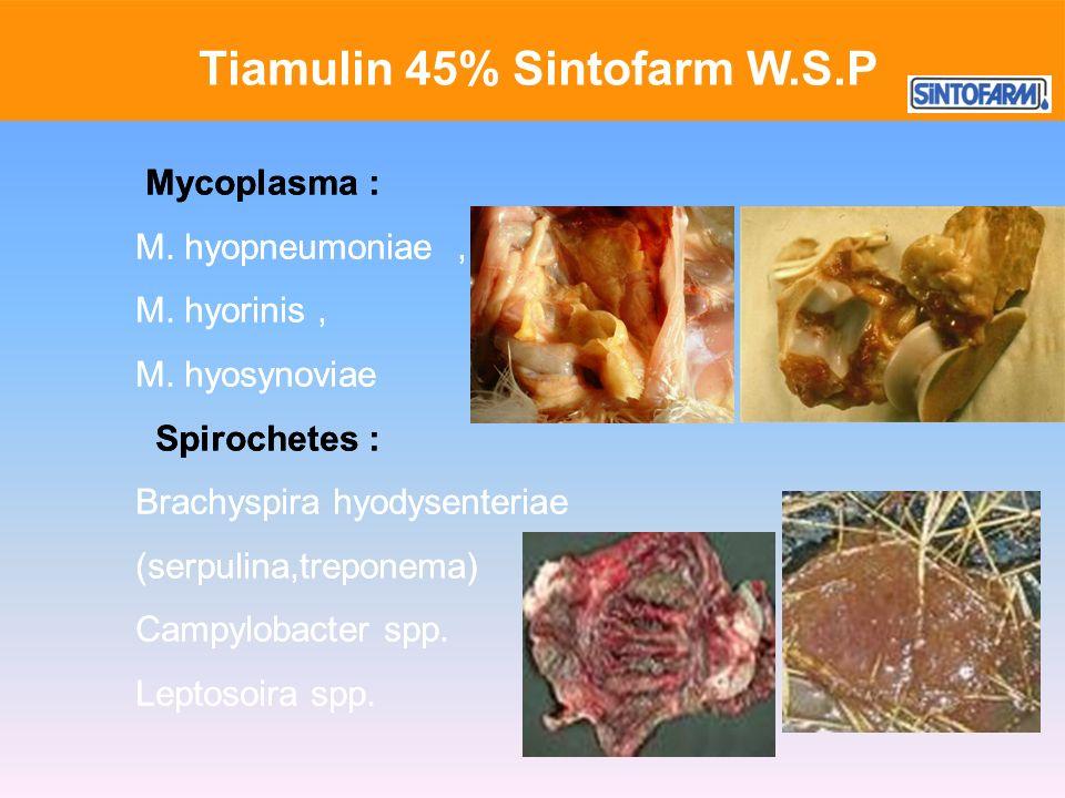 Tiamulin 45% Sintofarm W.S.P