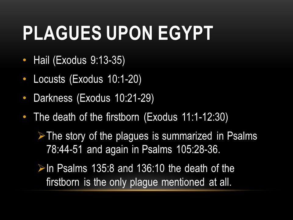 Plagues Upon Egypt Hail (Exodus 9:13-35) Locusts (Exodus 10:1-20)