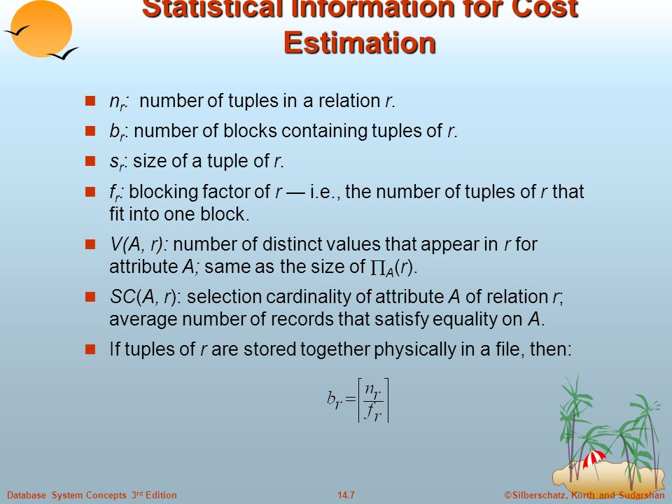 Statistical Information for Cost Estimation