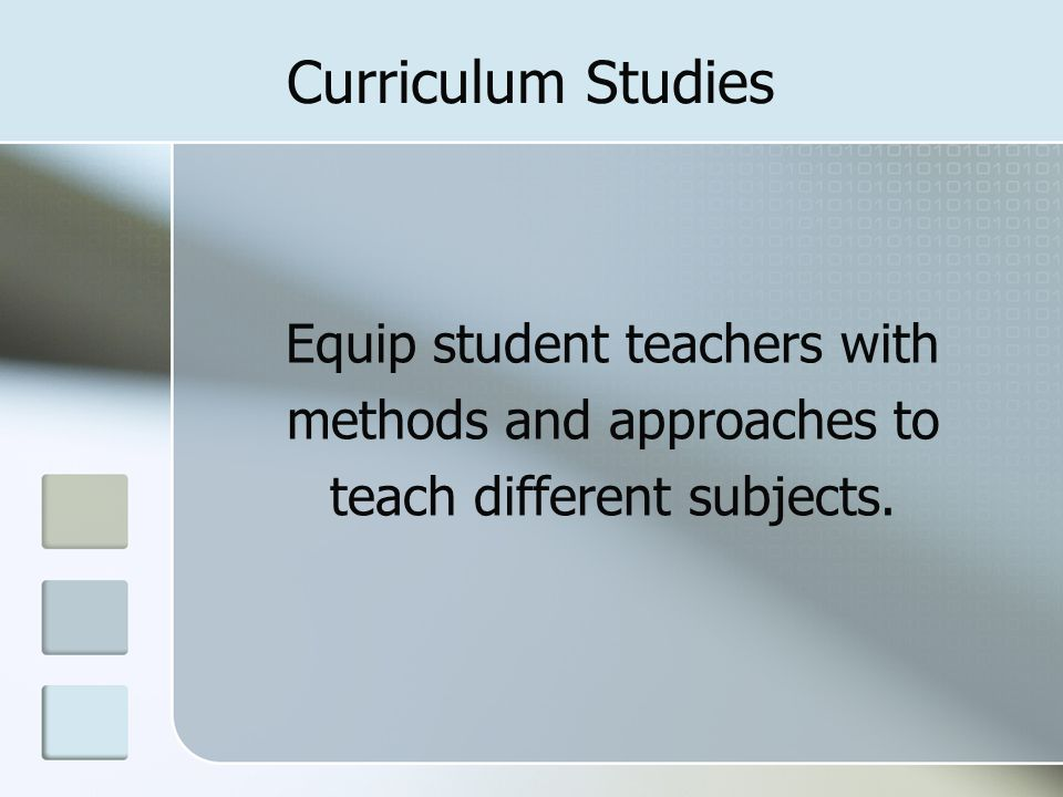 Curriculum Studies Equip student teachers with methods and approaches to teach different subjects.