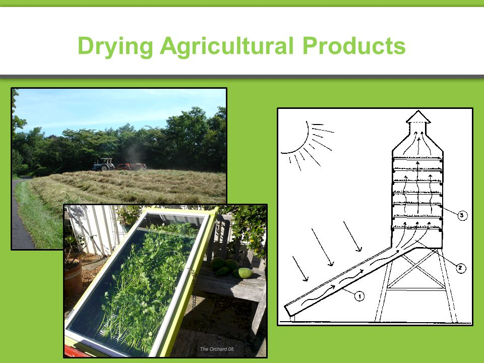 Drying Agricultural Products