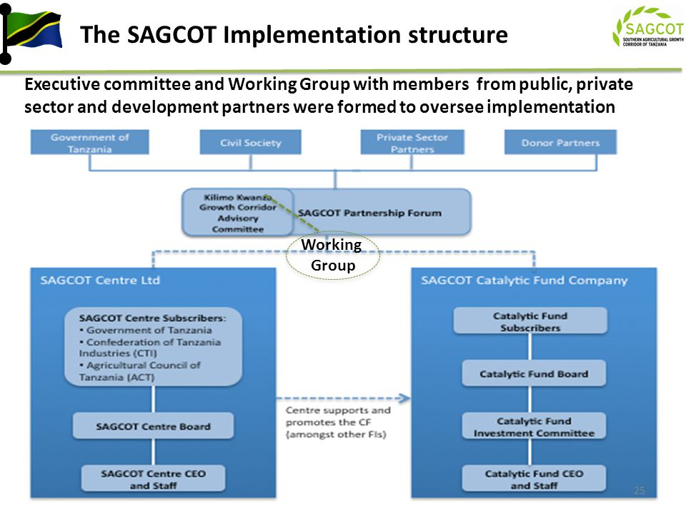 The SAGCOT Implementation structure