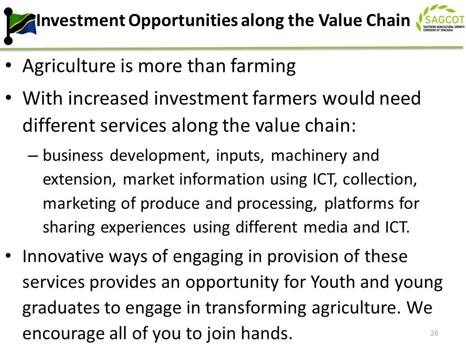 Investment Opportunities along the Value Chain