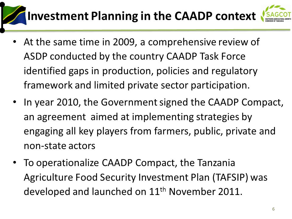 Investment Planning in the CAADP context
