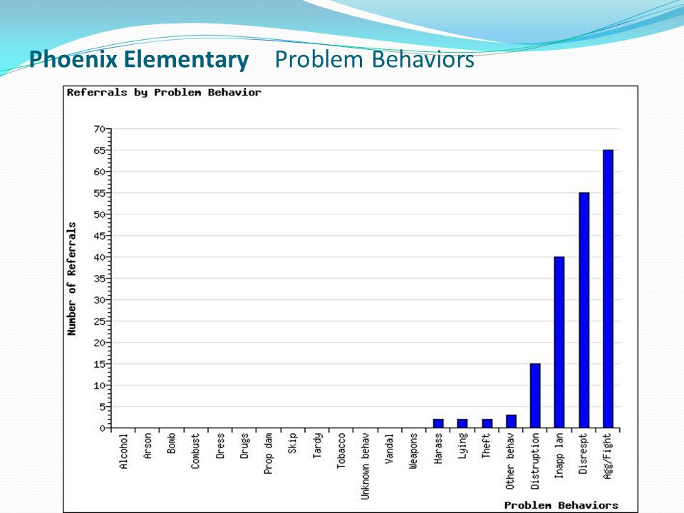 Phoenix Elementary Problem Behaviors