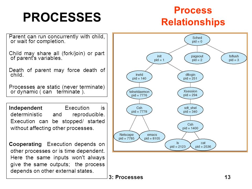 PROCESSES Process Relationships