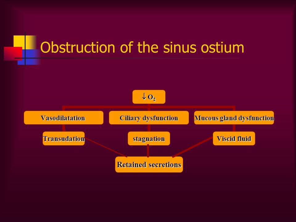 Obstruction of the sinus ostium