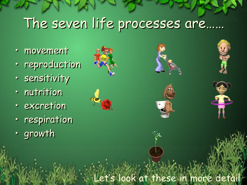 The seven life processes are……