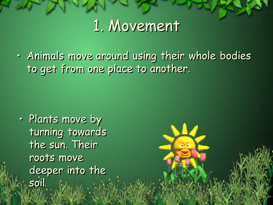 1. Movement Animals move around using their whole bodies to get from one place to another.