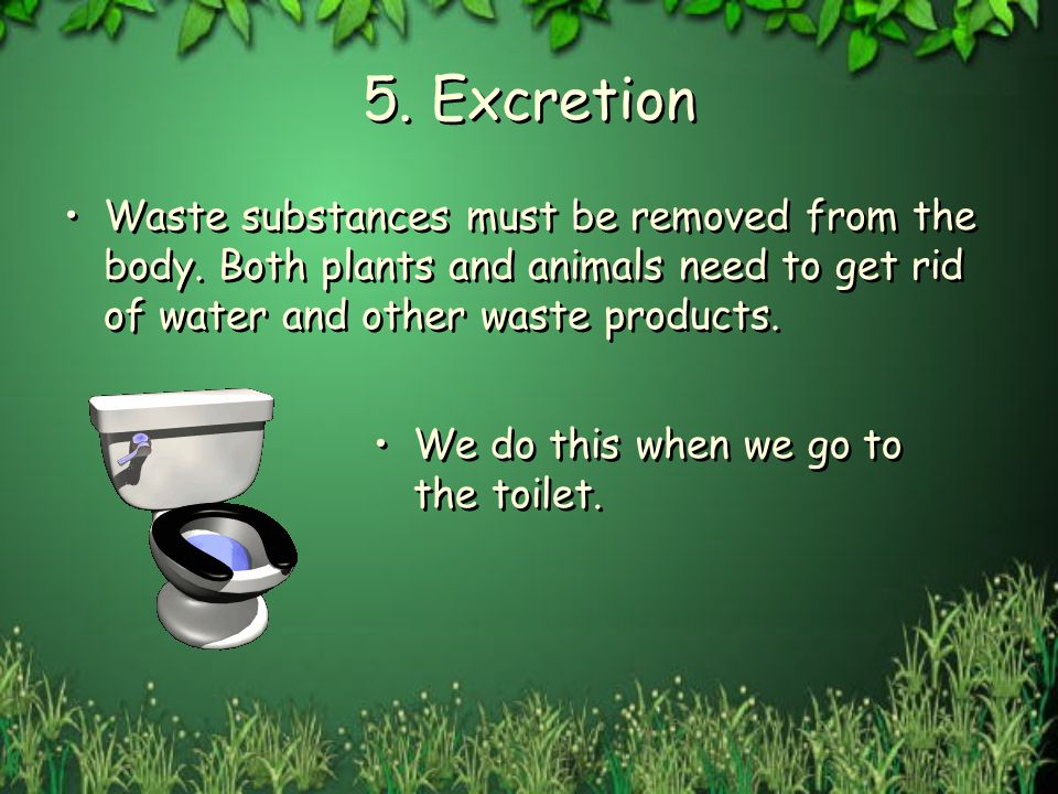 5. Excretion Waste substances must be removed from the body. Both plants and animals need to get rid of water and other waste products.