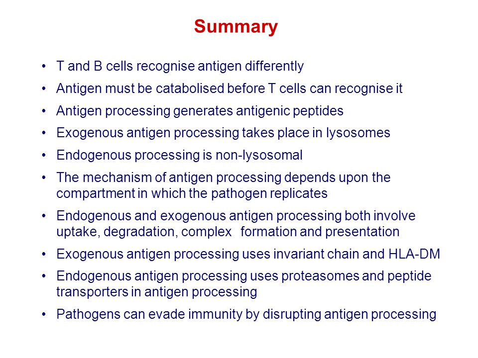 Summary T and B cells recognise antigen differently