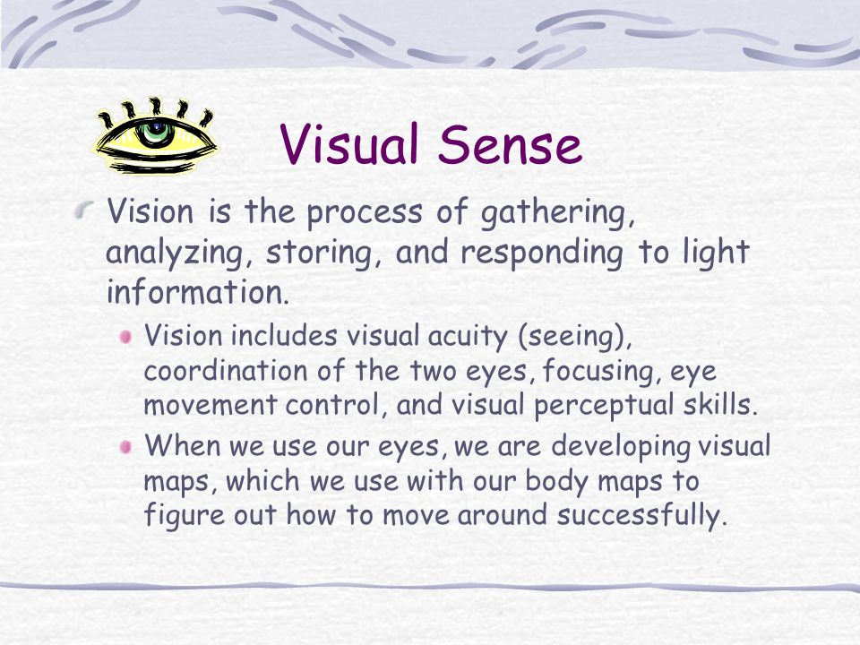 Visual Sense Vision is the process of gathering, analyzing, storing, and responding to light information.