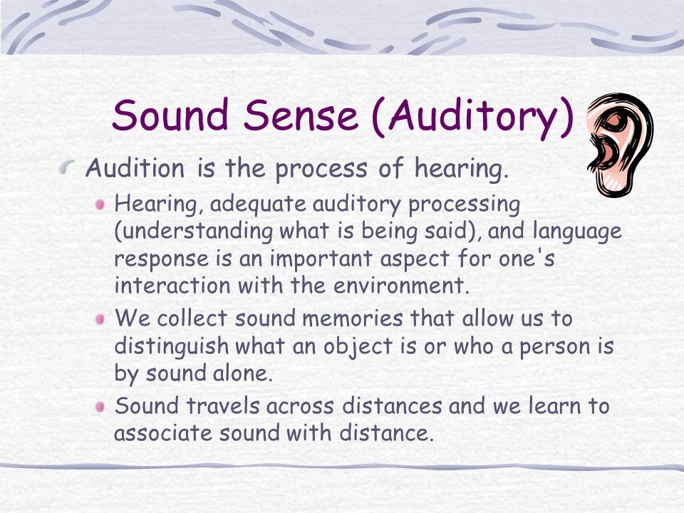 Sound Sense (Auditory)
