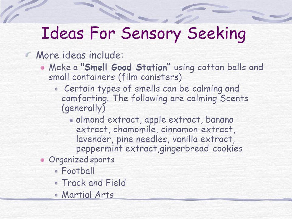 Ideas For Sensory Seeking
