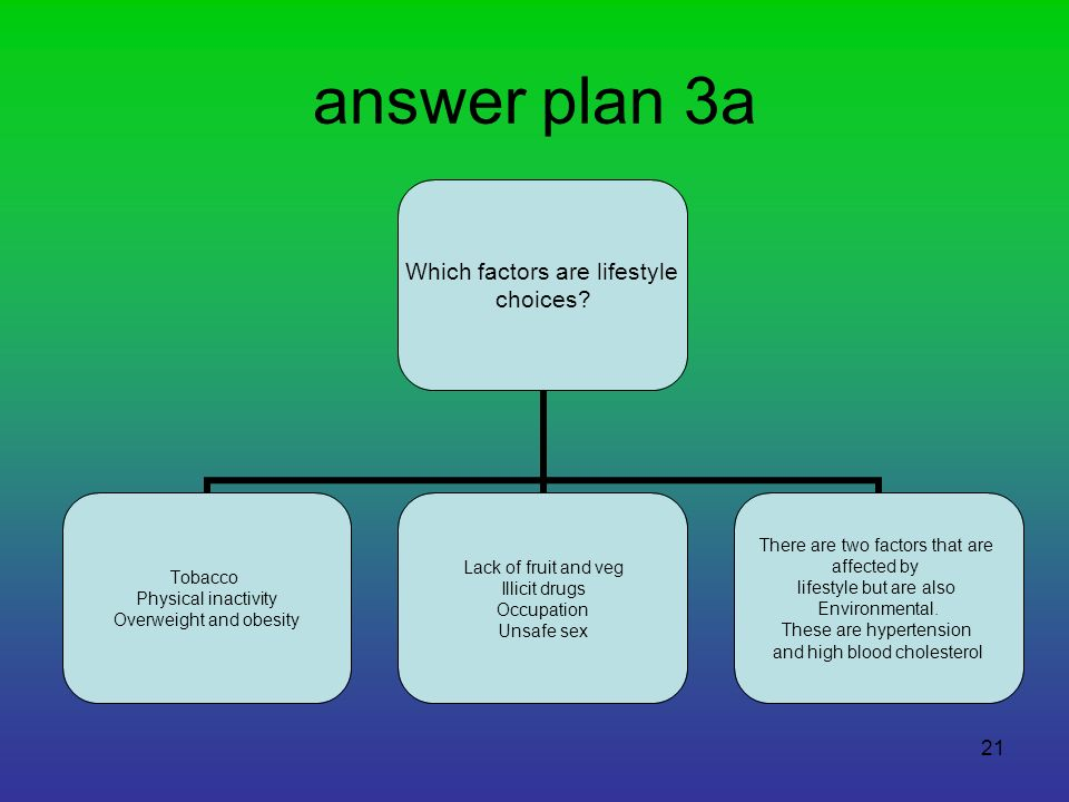 answer plan 3a