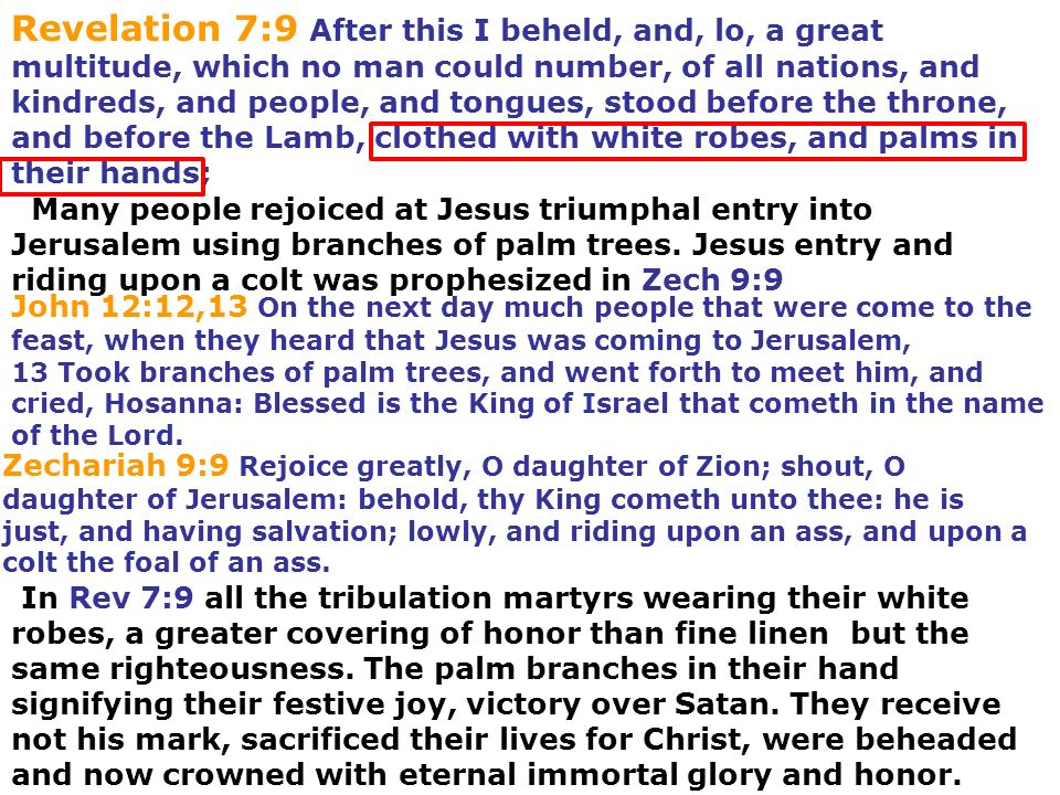 Revelation 7:9 After this I beheld, and, lo, a great multitude, which no man could number, of all nations, and kindreds, and people, and tongues, stood before the throne, and before the Lamb, clothed with white robes, and palms in their hands;