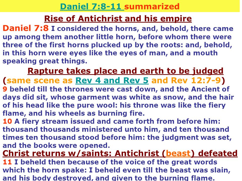 Daniel 7:8-11 summarized