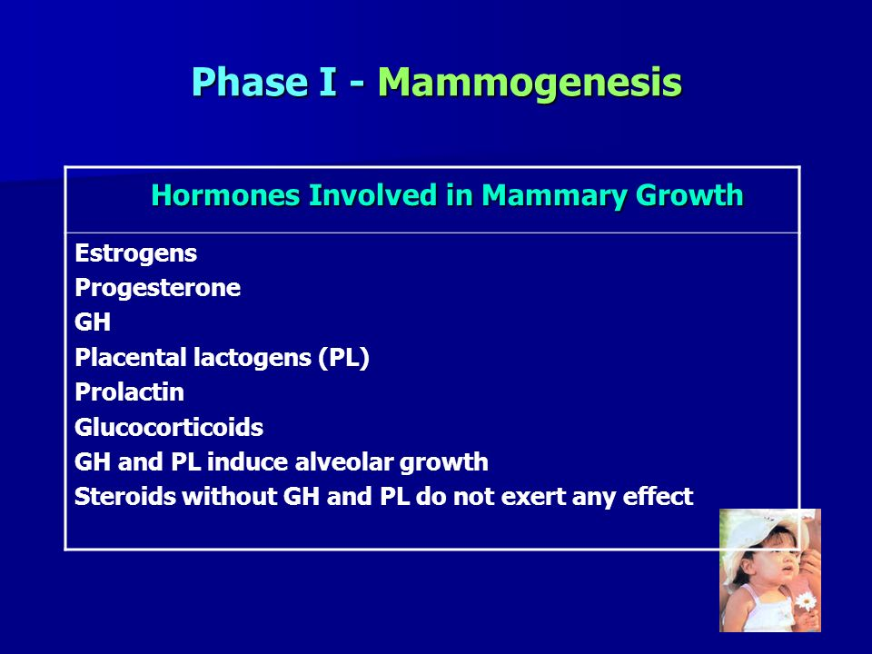 Hormones Involved in Mammary Growth