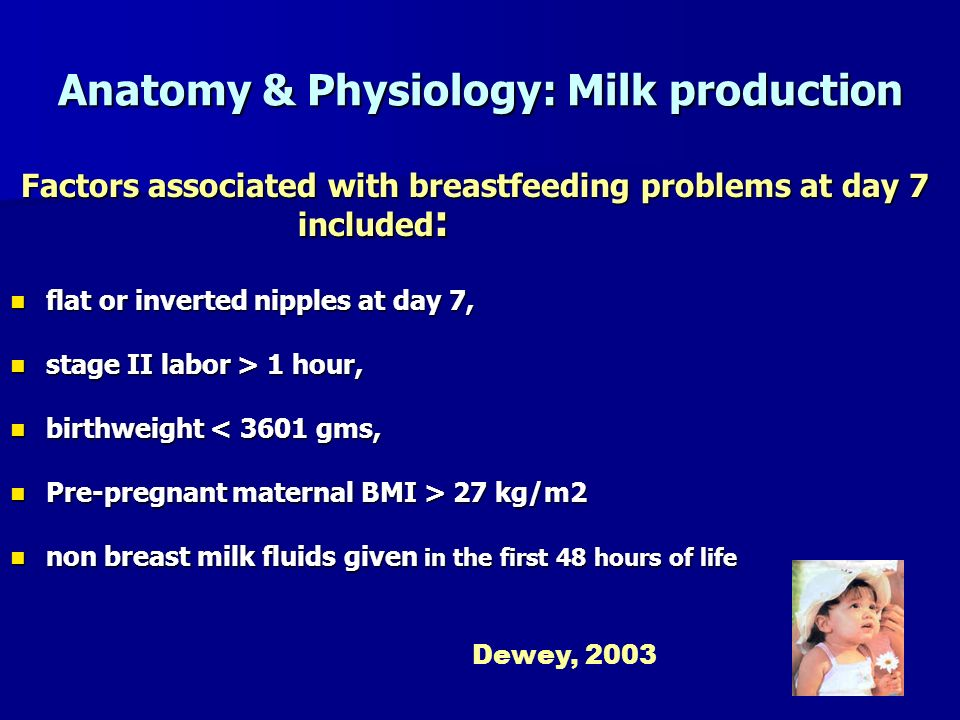 Anatomy & Physiology: Milk production