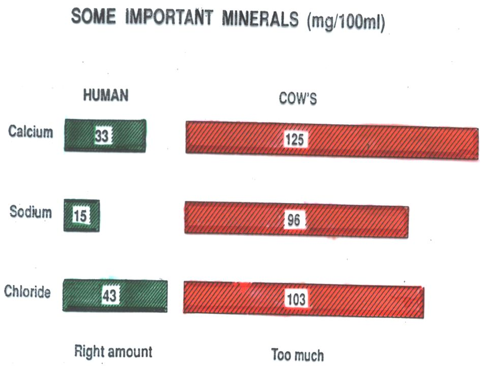 Minerals in human milk are largely protein bound and balanced which enhanvces bioavailability.