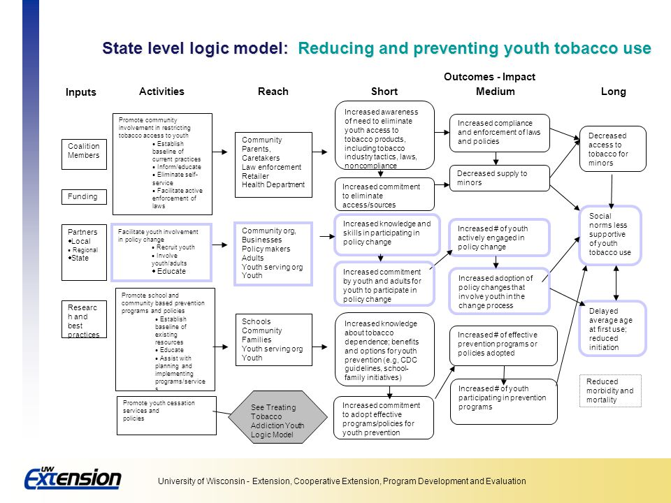 State level logic model: Reducing and preventing youth tobacco use