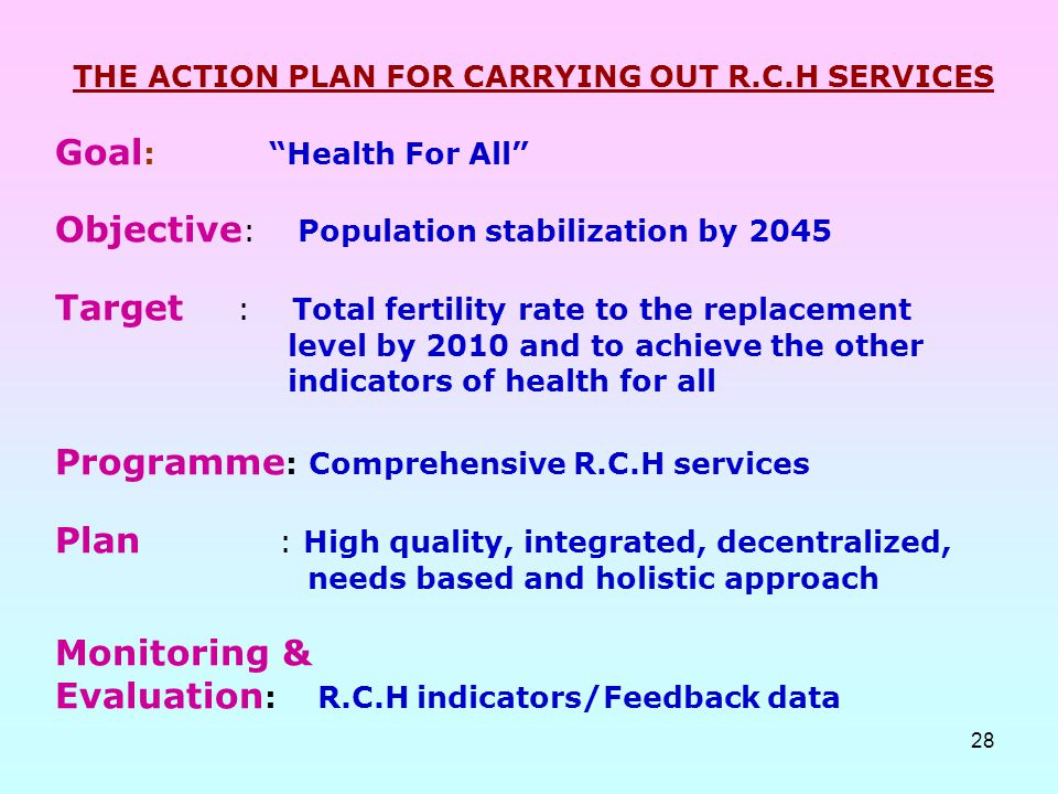 THE ACTION PLAN FOR CARRYING OUT R.C.H SERVICES