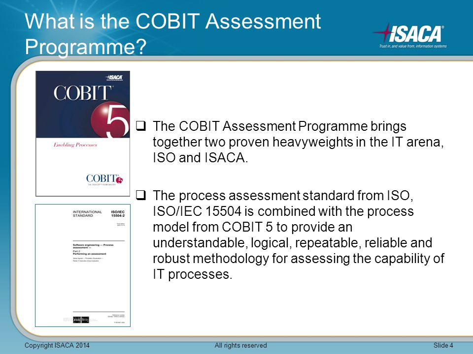 What is the COBIT Assessment Programme