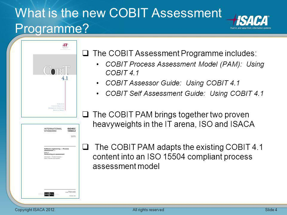 What is the new COBIT Assessment Programme