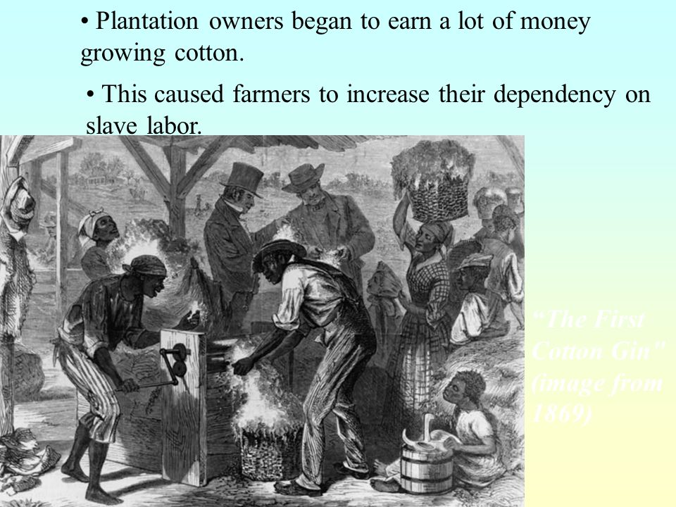 Plantation owners began to earn a lot of money growing cotton.