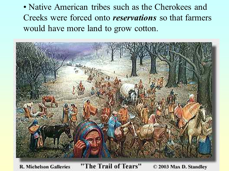 Native American tribes such as the Cherokees and Creeks were forced onto reservations so that farmers would have more land to grow cotton.