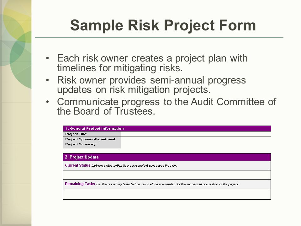 Sample Risk Project Form