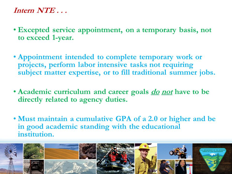 Intern NTE . . . Excepted service appointment, on a temporary basis, not to exceed 1-year.