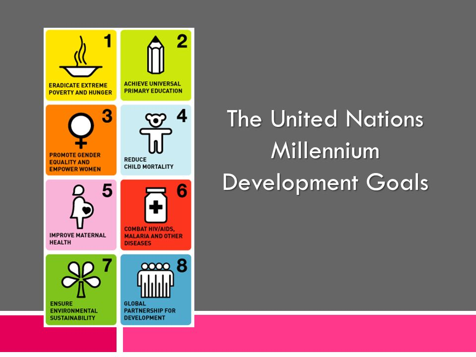 The United Nations Millennium Development Goals