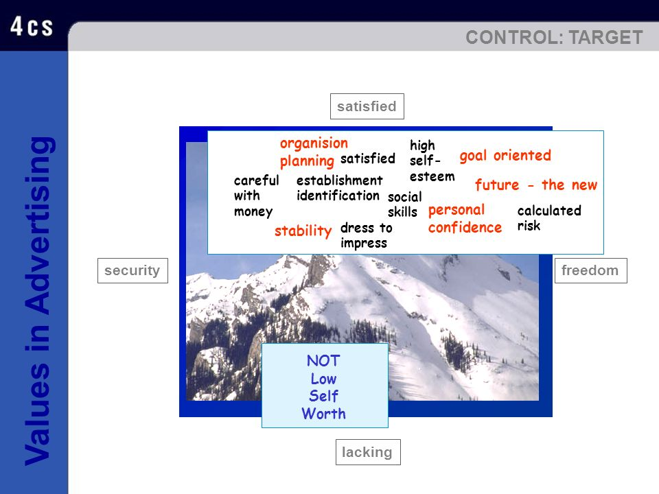 CONTROL: TARGET satisfied stability goal oriented organision planning