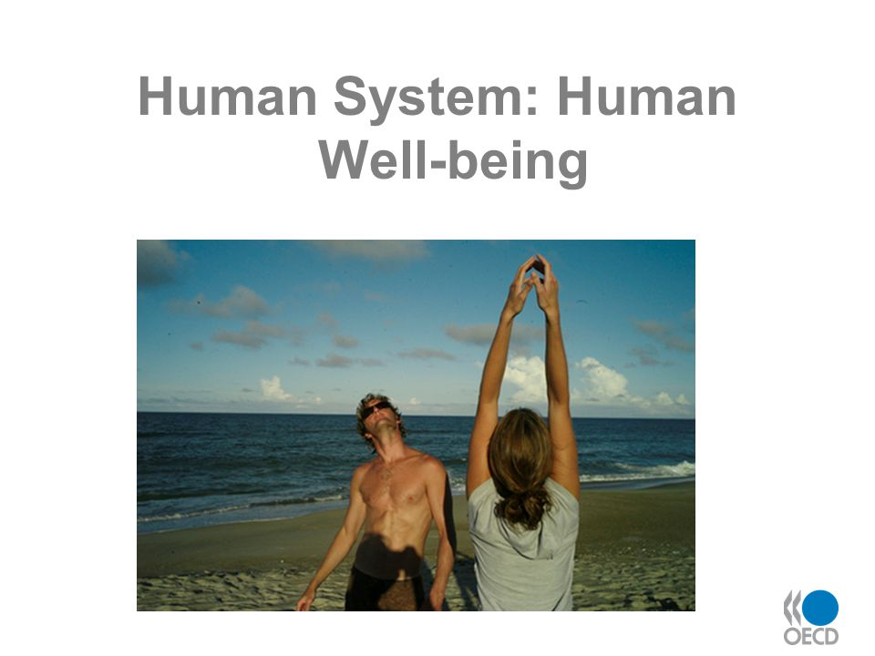 Human System: Human Well-being