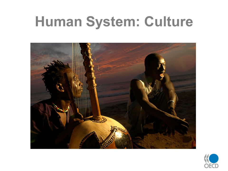 Human System: Culture