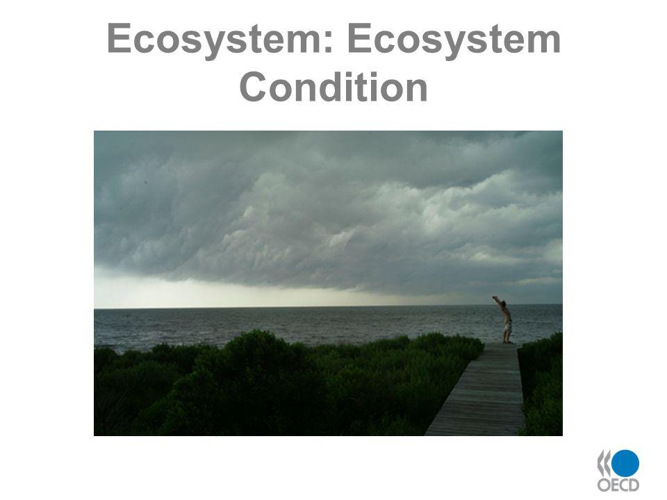 Ecosystem: Ecosystem Condition