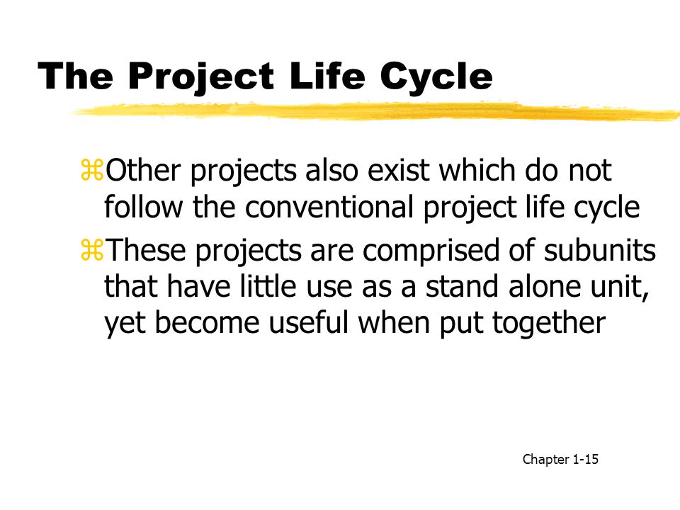 The Project Life Cycle Other projects also exist which do not follow the conventional project life cycle.