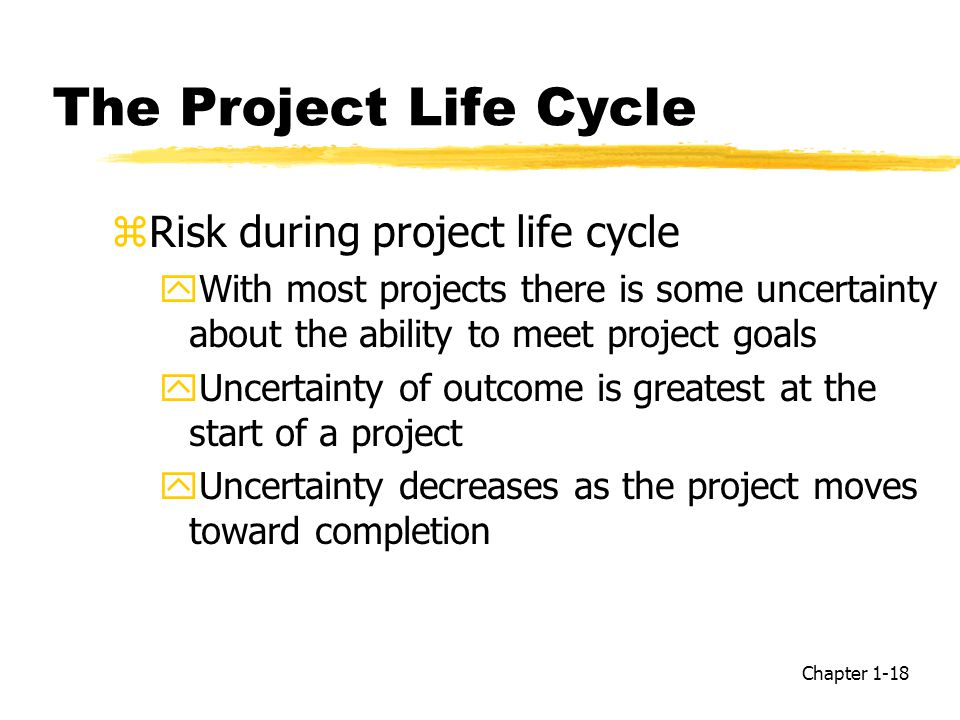 The Project Life Cycle Risk during project life cycle