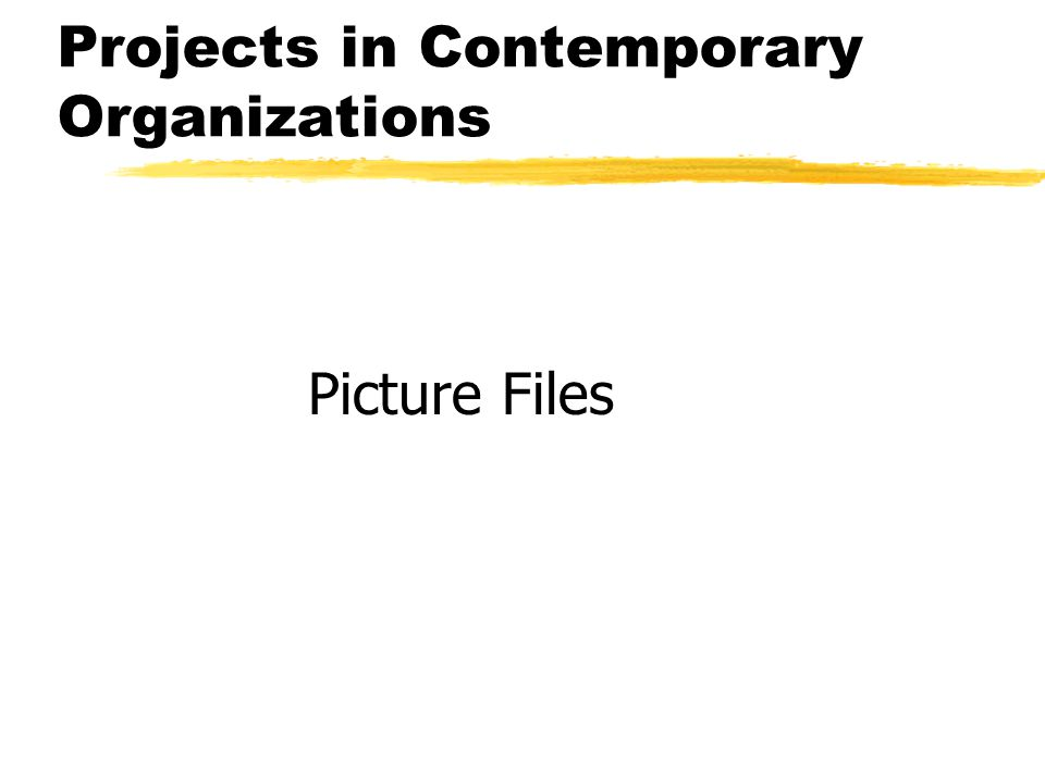 Projects in Contemporary Organizations