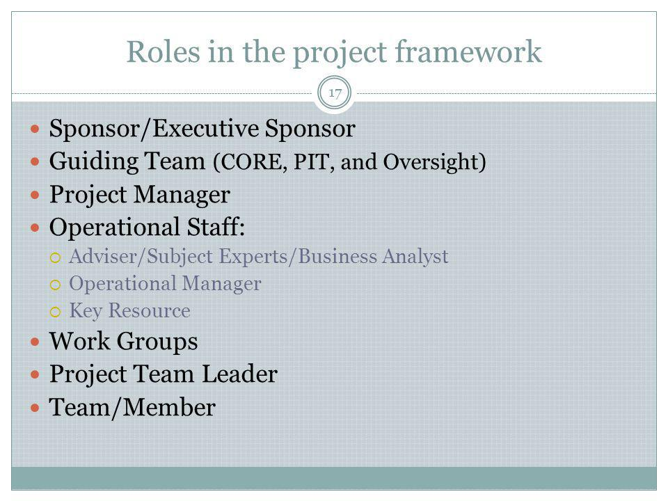 Roles in the project framework