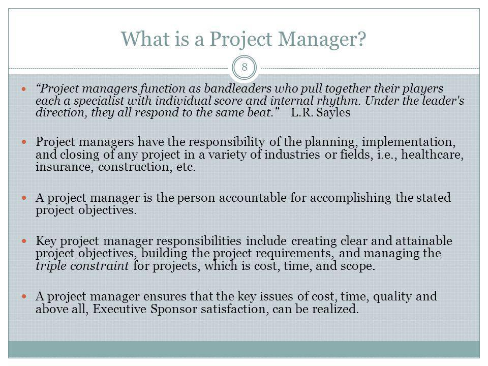What is a Project Manager