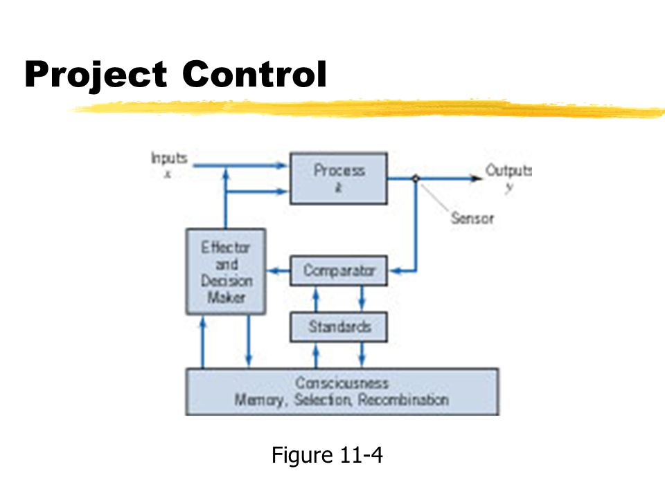 Project Control Figure 11-4