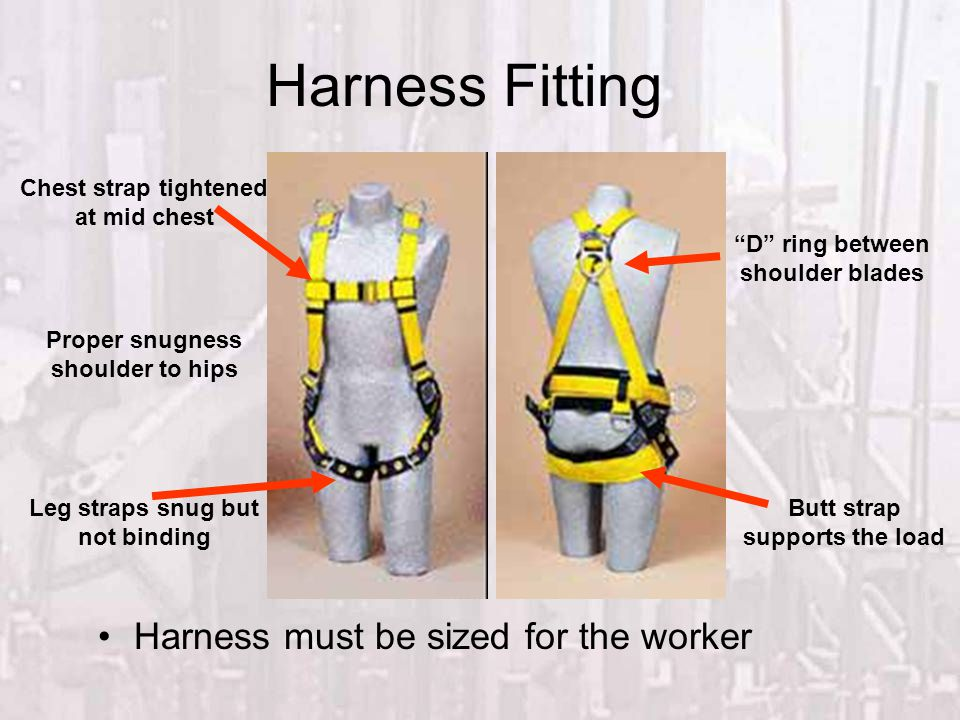 Harness Fitting Harness must be sized for the worker